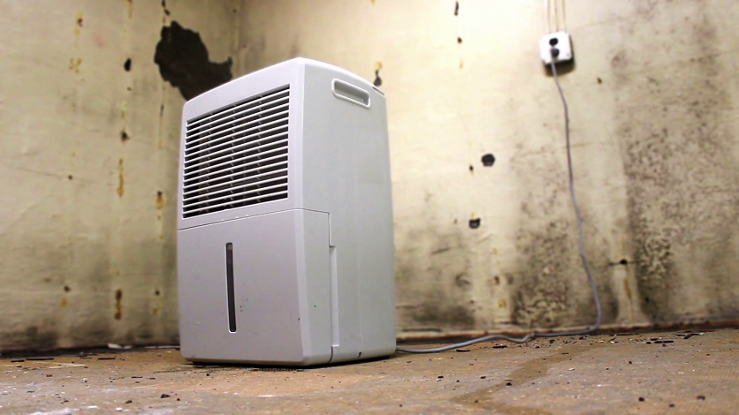 dehumidifier in the basement